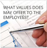 What values does MAY offer to the employees?